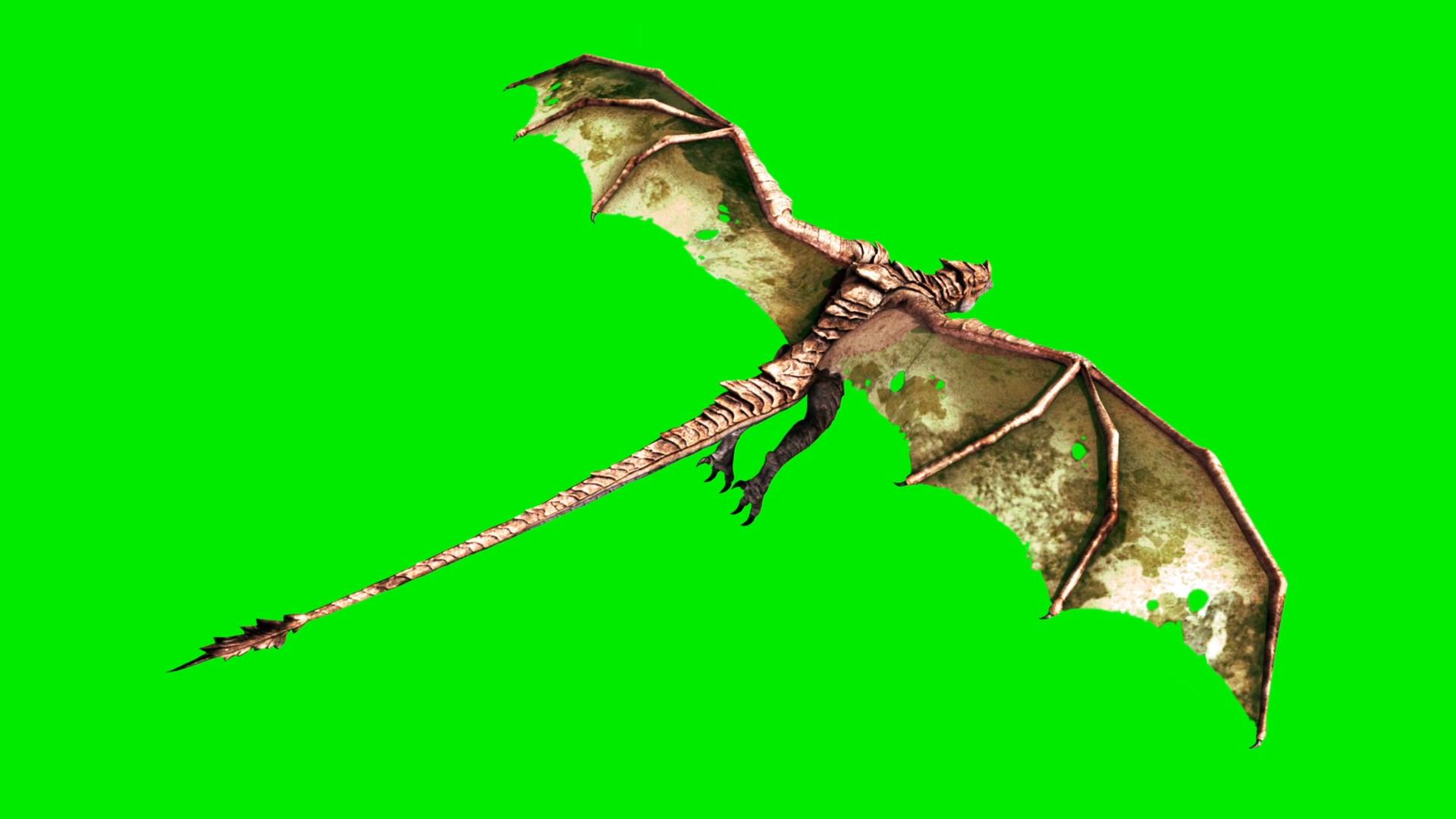 big dragon fly pixelboom