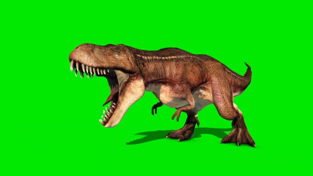 Tyrannosaurus – 3D Model Animated