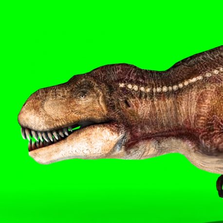 Tyrannosaurus T-Rex Run Various Angles HD – PixelBoom