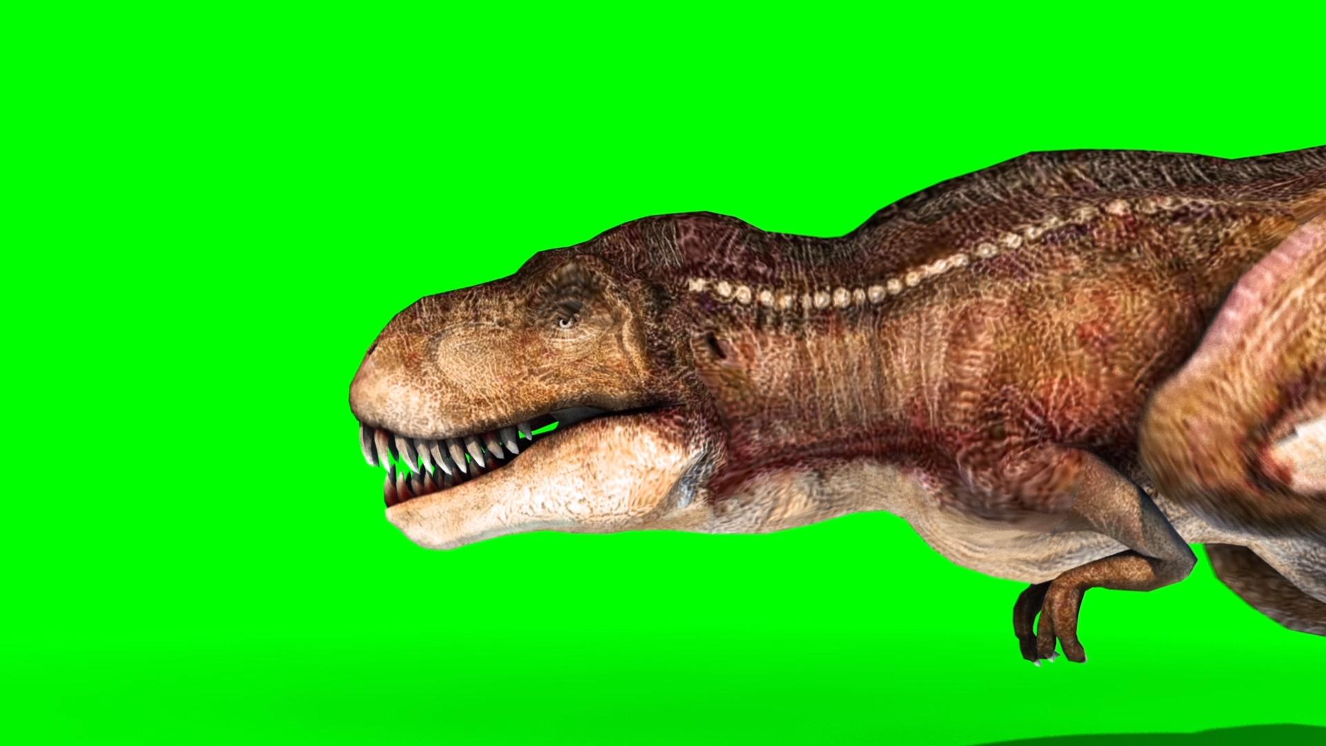 T-Rex Run - PixelBoom - photo#6