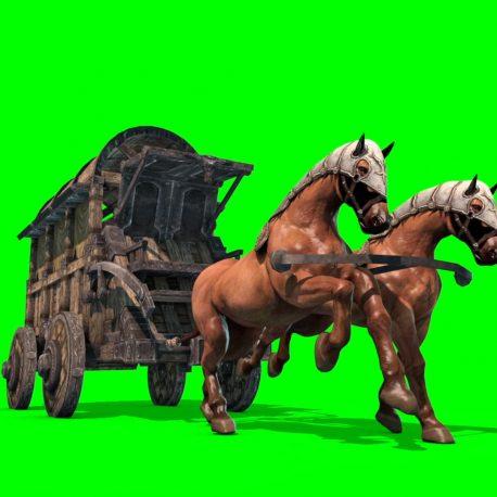 Carriage Horses Run Animals – PixelBoom
