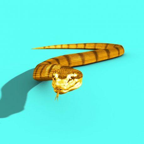 Gold Snake SKIN 2 Strip Attacks – PixelBoom