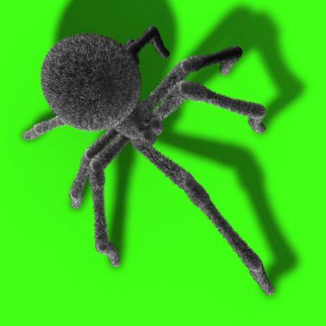 Arachnid Black Widow Spider Invasion – PixelBoom