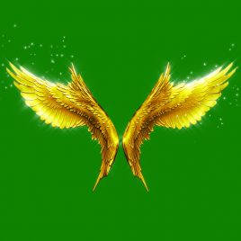 Gold Wings Particles