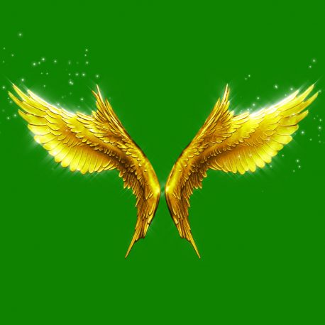Angels Flapping Wings Particles – PixelBoom