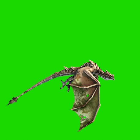 Big Dragon Fly Static Cam – PixelBoom