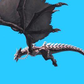 Dragon Transport – 3D Model Animated