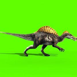 Dinosaur Spinosaurus – 3D Model Animated