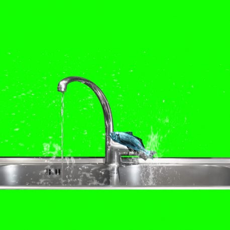 Fish Jump Open Tap Water Simulation – PixelBoom
