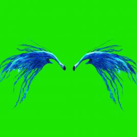 Feathered Wings – 3D Model Animated