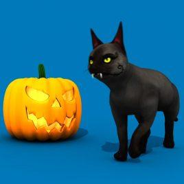 Halloween Cat – 3D Model Animated