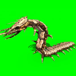 Giant Centipede – 3D Model Animated