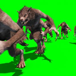 Horde Werewolves – 3D Model Animated