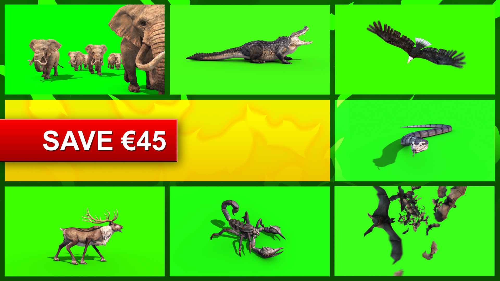 Specifica MEGA Pack