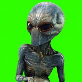 Grey Alien Walk – 3D Model Animated