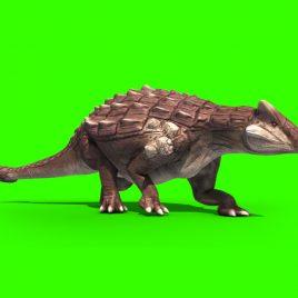 Ankylosaurus Dinosaurs – 3D Model Animated