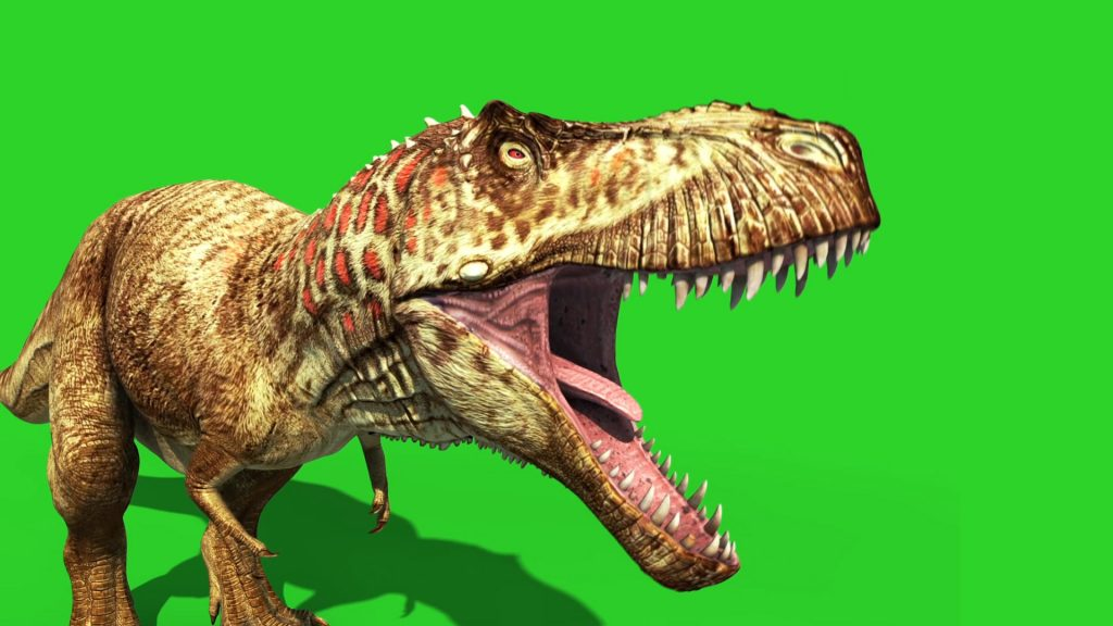 Tyrannosaur Feathered – 3D Model Animated