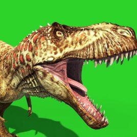 Tyrannosaur Feathered – 3D Model Animated