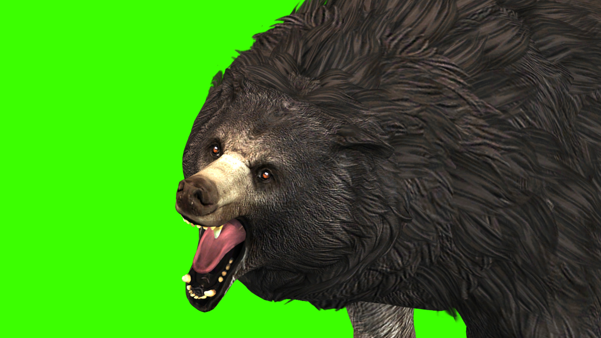 grizzly bear roar 3d model animated pixelboom