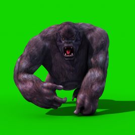 Gorilla Walk Attack – 3D Model Animated