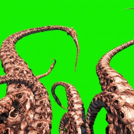 Tentacle Monster – 3D Model Animated