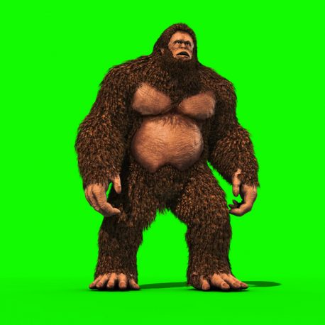 Bigfoot sighting 3D Model Animated PixelBoom Green Screen