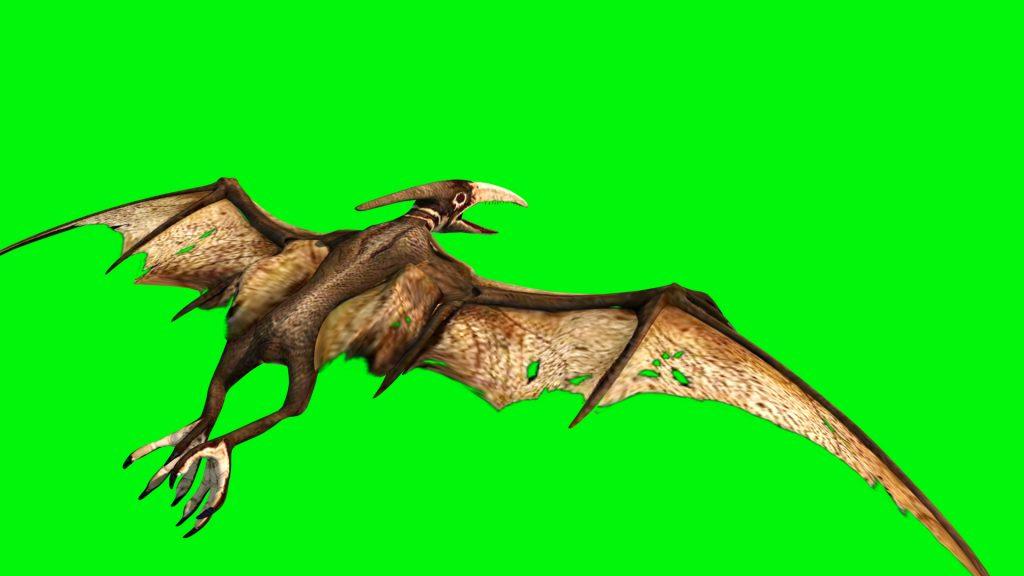 Pteranodon Dinosaurs – 3D Model Animated