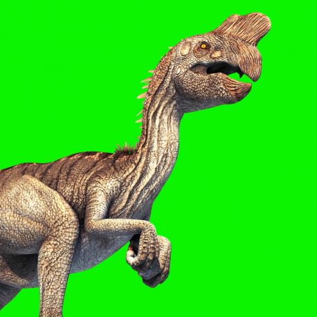 Green Screen Oviraptor Dinosaurs Jurassi World