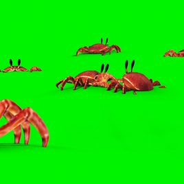 Group of Crab on the Sand PixelBoom