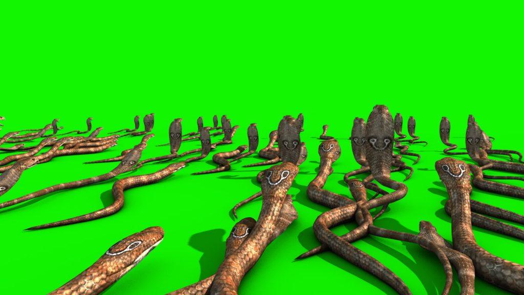 Invasion of Cobra – 3D Model Animated