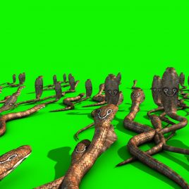 Invasion of Cobra Snakes PixelBoom