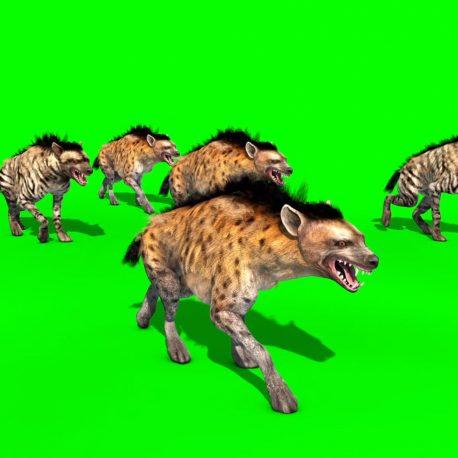Herd of Hyenas Animals PixelBoom
