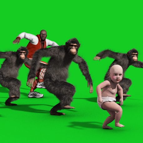 Chimp House Dance Man Baby Animation PixelBoom