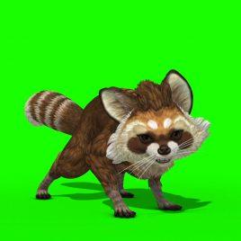 Raccoon Animal Walks Runs Attacks Dies PixelBoom