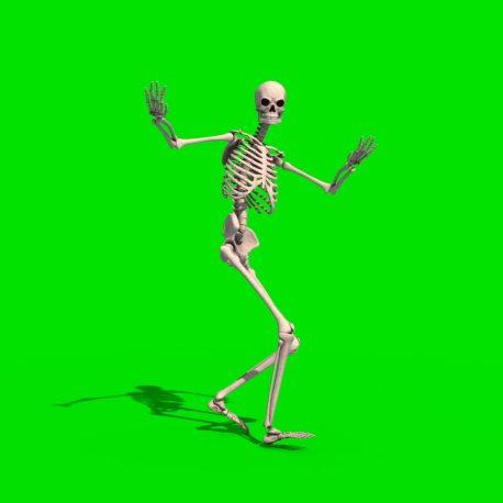 Skeleton Dancer Samba Gangnam Style Hip Hop PixelBoom