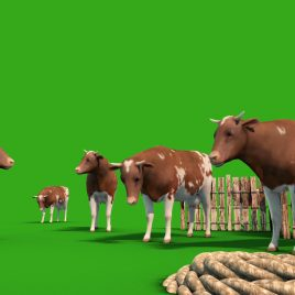 Herd of Cows Farm Animals PixelBoom