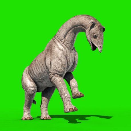 Paraceratherium Dinosaurs PixelBoom