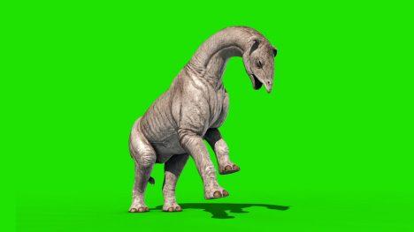 Paraceratherium – 3D Model Animated