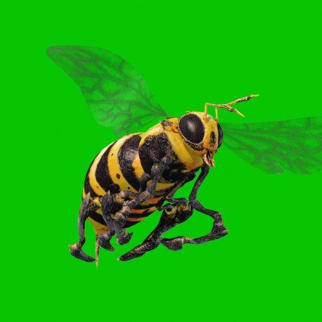 Swarm of Bees Wasps PixelBoom