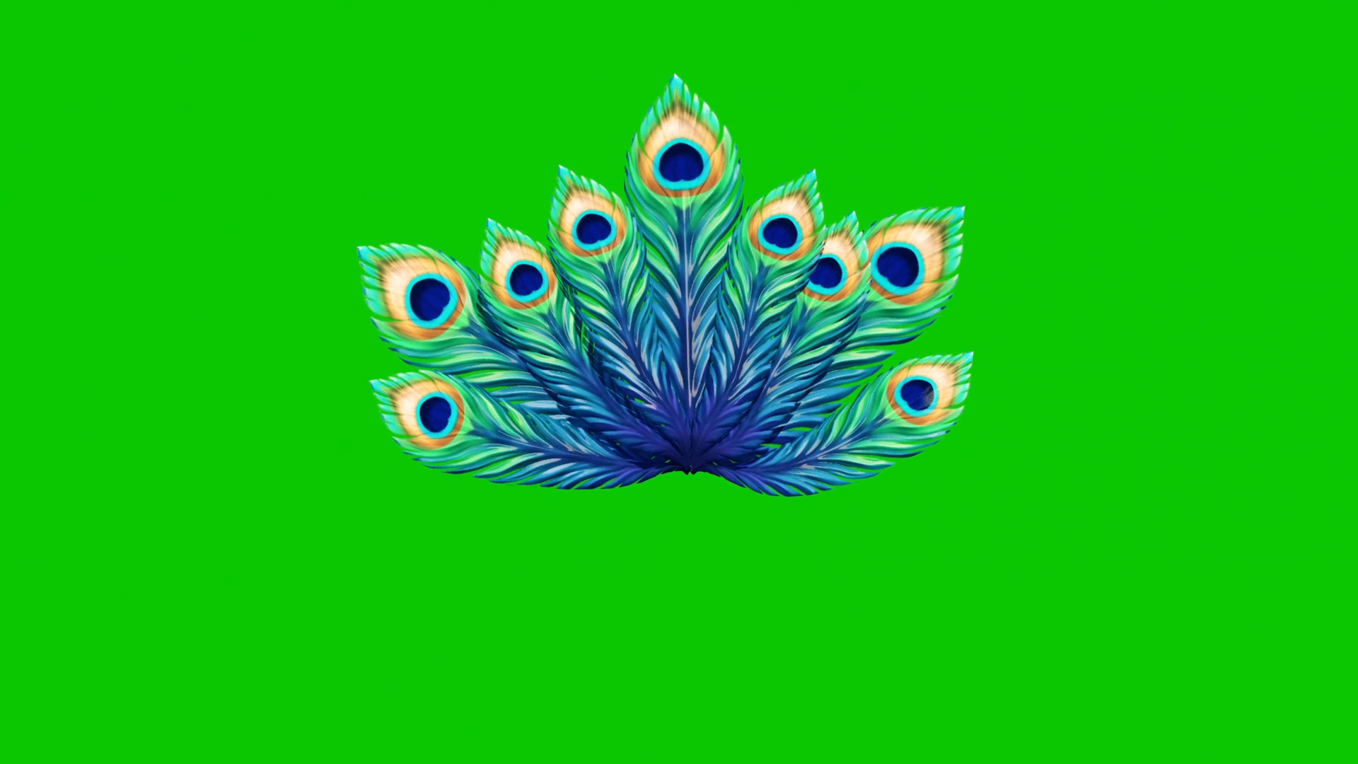 Peacock Feathers 3d Model Animated Pixelboom
