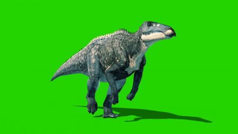 Shantungosaurus – 3D Model Animated