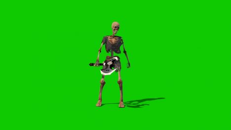 Skeleton Warrior – 3D Model Animated