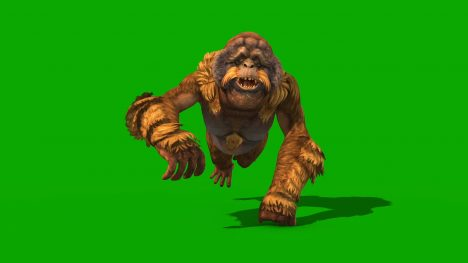 Orangutans – 3D Model Animated