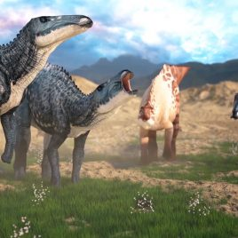 Dino and Dragons – 3D Model Animated