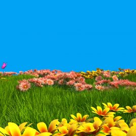 Flowery Meadow with Butterflies 3D Animation PixelBoom