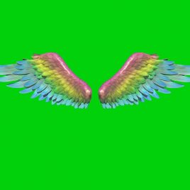 Fantastic Rainbow Wings 3D PixelBoom