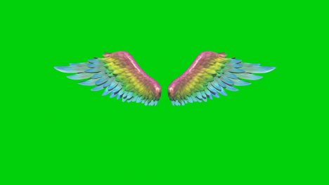 Rainbow Wings – 3D Model Animated