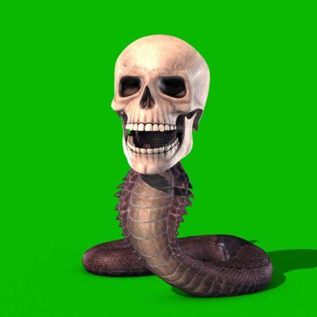 Green Screen Snake Skull 3D Animation PixelBoom