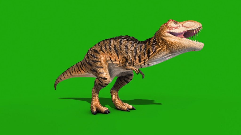 Angry T-Rex 3D Animation PixelBoom