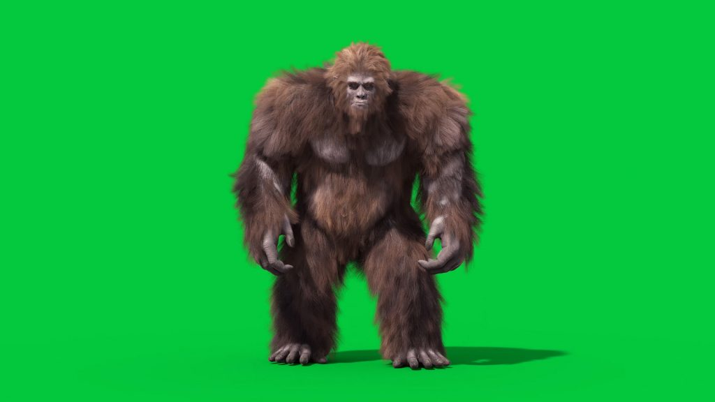 Green Screen Bigfoot Yeti Real Fur 3D Animation PixelBoom